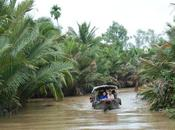 Life River: Cruise Mekong Delta