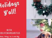Surviving Holidays with Entire Dysfunctional Family