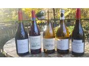 #ThankfulForVino with Argentinian Chardonnay Pinot Noir