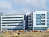 Elron Divulge Insights Danish Innovation Center, Strengthening Israeli-Denmark Cyber Ecosystem