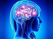 Ayurvedic Herbs More Effective Than Amandantine Parkinson's Disease?