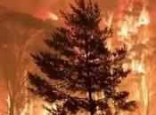 Australia Great Burn Continues