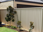 Things Consider Minimize Fading Colourbond Fences
