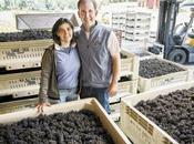 Latest Oregon Wine Press: Perle Willamette