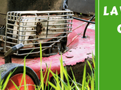 Need Lawn Service Company Your Home?