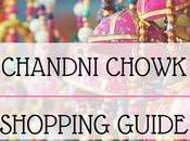 Book Travel Guide Chandni Chowk Delhi