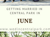 Getting Married Central Park June