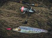 Best Spinning Rods Trout Incredible Accuracy Speed