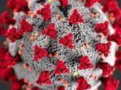 Regarding Corona Virus--Tips from