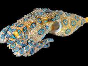Deadly Blue-ringed Octopus Expanding Range Global Warming