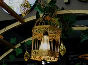 Welcome Haulah Cafe, Visayas Avenue's Neighborhood Cafe!