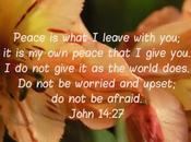 Encouragement: Have Peace, World Has, That Jesus Gives