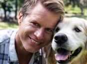 Best Treats Dogs With Pancreatitis