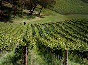 Getting Know Adelaide Hills