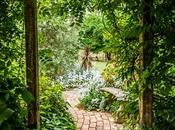 Making Your Garden Perfect Summer