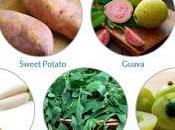 What Should Eat? Healthy Winter Foods Swear