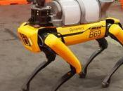 Robotic Dogs Visiting COVID-19 Patients Treat Them Remotely