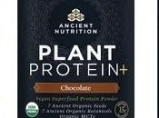 Ancient Nutrition Unveils USDA Certified Organic Plant Protein+ Line