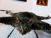 """Orville Flying Art? """"Orvillecopter"""" Just Stunt?"""
