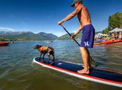 with Fido: Tips Active Summer Your