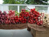 Wilder Pictures: Farmer's Market, Vollume