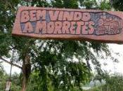 Brazilian Cachaça Trip Curitiba Morretes