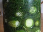 MindBlog's Half-sour Pickle Recipe