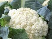 Give Baby Cauliflower?