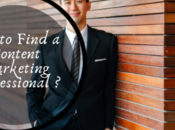 Find Content Marketing Professional