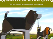 Pet-friendly Bark Park B&B: Stay This AirnBn-Beagle