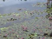 Travel Guide Budget Itinerary Lake Sebu