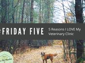 Five Friday: Reasons Love Veterinarian #FridayFive