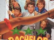 Film Challenge Bachelor Party (1984)