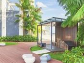 Rooftop Gardens Conserve Energy It's Benefits