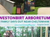 Westonbirt Arboretum Review Family Days Post-lockdown Near Cheltenham
