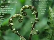 Lovingkindness Blessing