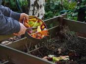 Make Compost Your Backyard