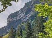 Alpine Hunting