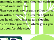 Organic Pillow Benefits