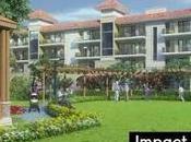 Impact Coronavirus Indian Real Estate