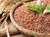 Rice Paleo Friendly?