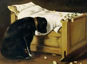 Dogs Mourn Deeply Humans