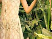Tena Durrani Camellia Collection Women