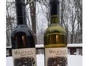 Milicevic Family Vineyards: Wine from Louisiana Herzegovina