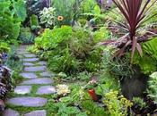 Brilliant Ways Create Eco-Friendly Garden