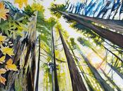 Huge Painting Redwood Forest: Emerging Autumn
