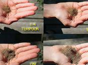 Aide-Memoire: Learning Measure Teaspoons Tablespoons Sight