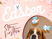 Hazel's Easter Stories: Happy from Paws Reaction