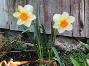 Naming Easter