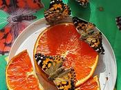 Celebrate Earth with Butterflies